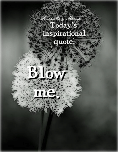 Inspirational Quotes and Memes