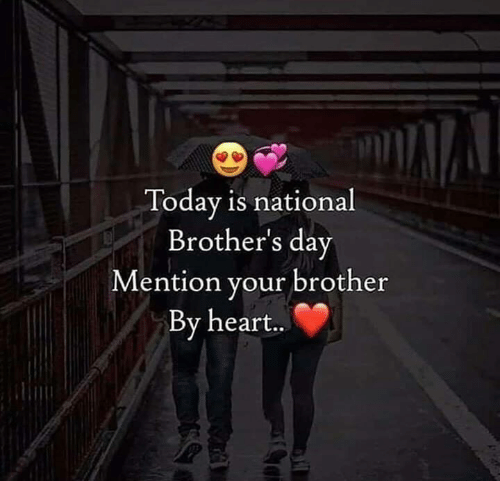 Memes, Heart, and Today: Today is national  Brother's day  ention your brother  By heart..