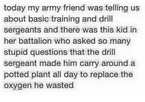 Memes, Army, and Oxygen: today my army friend was telling us  about basic training and drill  sergeants and there was this kid in  her battalion who asked so many  stupid questions that the drill  sergeant made him carry around a  potted plant all day to replace the  oxygen he wasted