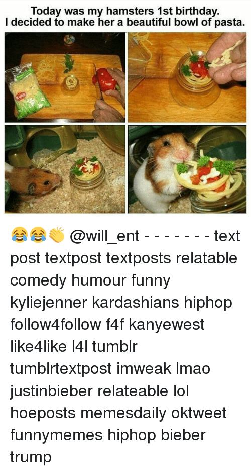 Memes, 🤖, and Pasta: Today was my hamsters 1st birthday.  I decided to make her a beautiful bowl of pasta. 😂😂👏 @will_ent - - - - - - - text post textpost textposts relatable comedy humour funny kyliejenner kardashians hiphop follow4follow f4f kanyewest like4like l4l tumblr tumblrtextpost imweak lmao justinbieber relateable lol hoeposts memesdaily oktweet funnymemes hiphop bieber trump