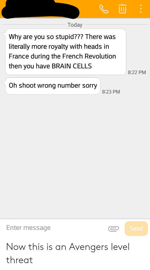 Reddit, Sorry, and Avengers: Today  Why are you so stupid??? There was  literally more royalty with heads in  France during the French Revolution  then you have BRAIN CELLS  8:22 PM  Oh shoot wrong number sorry  8:23 PM  Enter message  Send Now this is an Avengers level threat