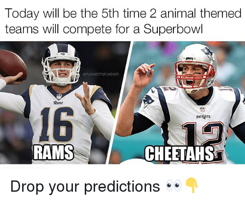 Nfl, Patriotic, and Animal: Today will be the 5th time 2 animal themed  teams will compete for a Superbowl  FUNNIESTNFLMEMES  Rams  16  PATRIOTS  RAMS  CHEETAHS Drop your predictions 👀👇