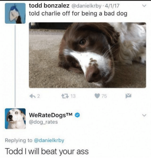 Ass, Bad, and Charlie: todd bonzalez @danielkrby 4/1/17  told charlie off for being a bad dog  13 13  75  WeRateDogsTM  @dog_rates  Replying to @danielkrby  Todd I will beat your ass