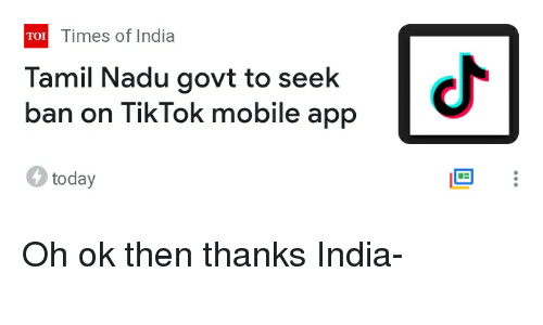 TOI Times of India Tamil Nadu Govt to Seek Ban on TikTok