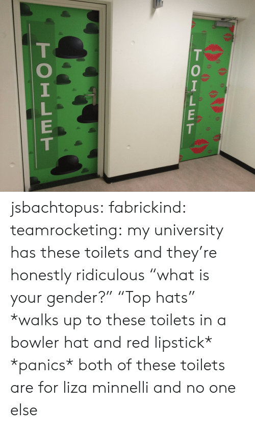 "Tumblr, Blog, and Http: TOILET  TOILET jsbachtopus: fabrickind:   teamrocketing:  my university has these toilets and they're honestly ridiculous  ""what is your gender?"" ""Top hats""   *walks up to these toilets in a bowler hat and red lipstick* *panics*   both of these toilets are for liza minnelli and no one else"
