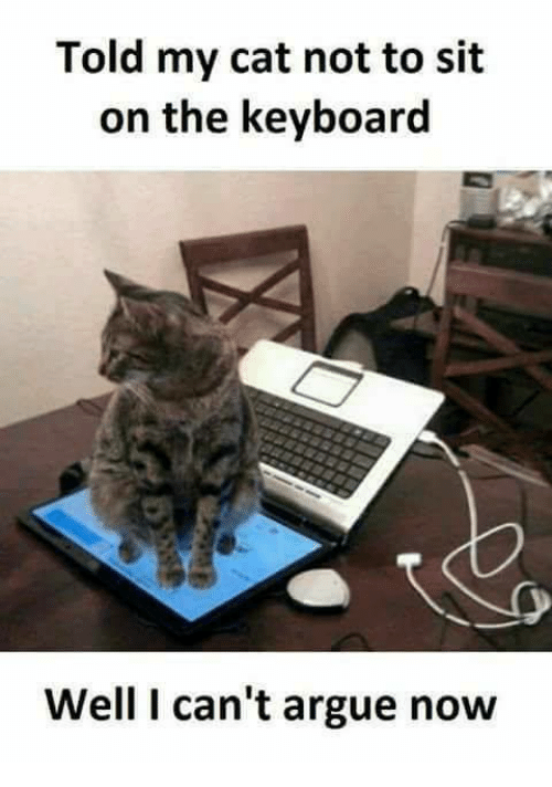 Arguing, Grumpy Cat, and Keyboard: Told my cat not to sit  on the keyboard  Well I can't argue now