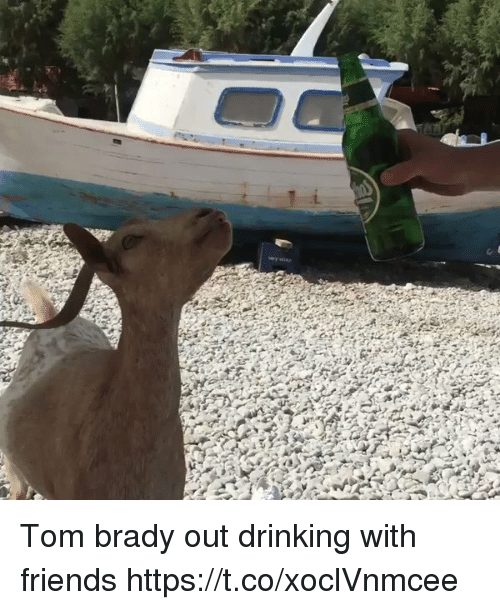 Drinking, Friends, and Memes: Tom brady out drinking with friends https://t.co/xoclVnmcee