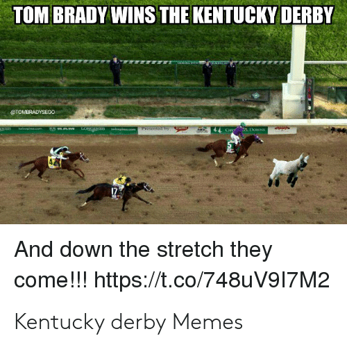 TOM BRADY WINS THE KENTUCKY DERBY TOMBRADYSEGO and Down the Stretch They  Come!!! Httpstco748uV917M2 Kentucky Derby Memes | Meme on ME.ME