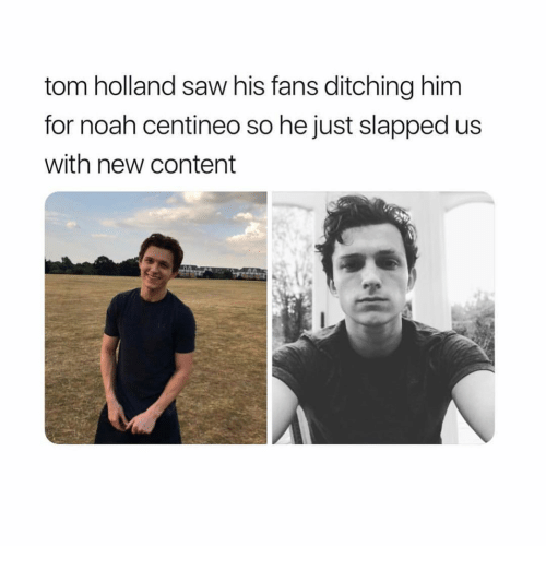 Tom Holland Saw His Fans Ditching Him for Noah Centineo So He Just