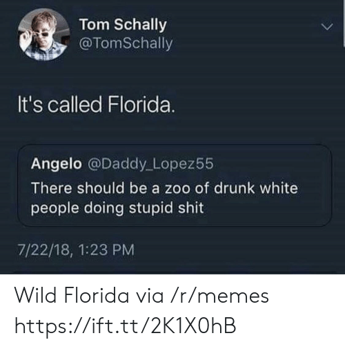 Drunk, Memes, and Shit: Tom Schally  @TomSchally  It's called Florida.  Angelo @Daddy Lopez55  There should be a zoo of drunk white  people doing stupid shit  7/22/18, 1:23 PM Wild Florida via /r/memes https://ift.tt/2K1X0hB