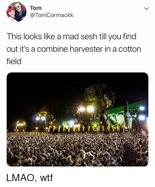 Lmao, Wtf, and Relatable: Tom  @TomCormackk  This looks like a mad sesh till you find  out it's a combine harvester in a cotton  field LMAO, wtf