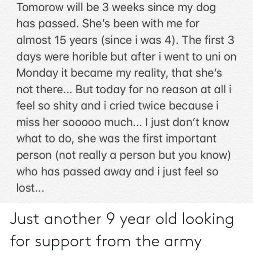 Lost, Army, and Today: Tomorow will be 3 weeks since my dog  has passed. She's been with me for  almost 15 years (since i was 4). The first 3  days were horible but after i went to uni orn  Monday it became my reality, that she's  not there... But today for no reason at all i  feel so shity and i cried twice because i  miss her sooooo much... I just don't know  what to do, she was the first important  person (not really a person but you know)  who has passed away and i just feel so  lost.. Just another 9 year old looking for support from the army