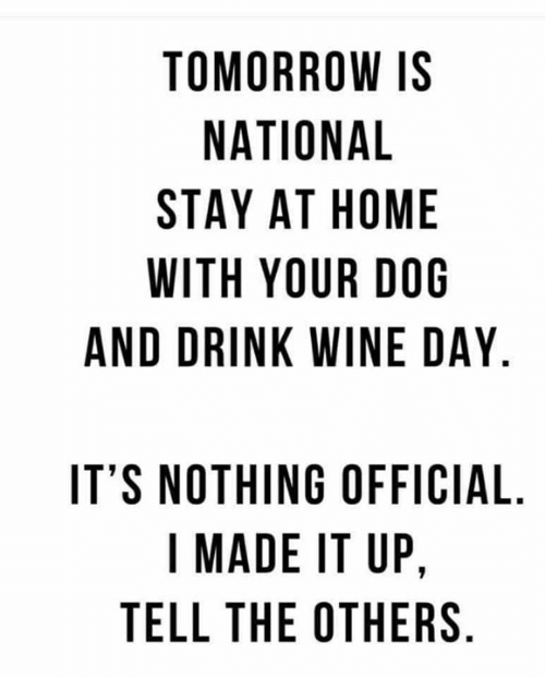 Memes, Wine, and Home: TOMORROW IS  NATIONAL  STAY AT HOME  WITH YOUR DOG  AND DRINK WINE DAY.  IT'S NOTHING OFFICIAL  I MADE IT UP,  TELL THE OTHERS