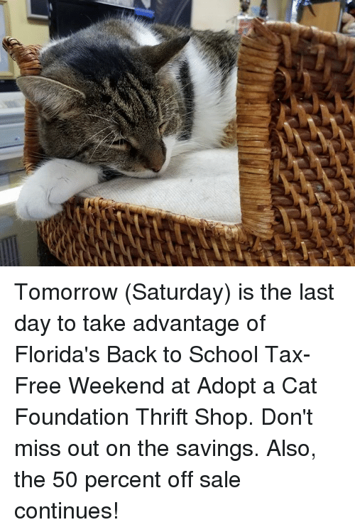 tomorrow saturday is the last day to take advantage of 26958174 ✅ 25 best memes about tax free weekend tax free weekend memes