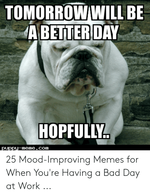 Tomorrow Willbe A Betterday Hopfully Puppu Meme Com 25 Mood
