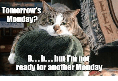 tomorrows monday b b but im not ready for another monday 23798765 ✅ 25 best memes about holiday 2016 holiday 2016 memes,B But Meme