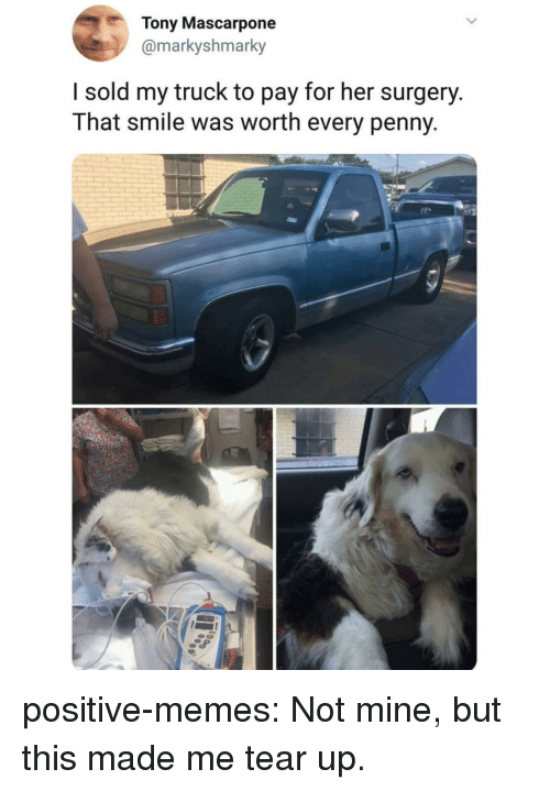 Memes, Tumblr, and Blog: Tony Mascarpone  @markyshmarky  I sold my truck to pay for her surgery.  That smile was worth every penny positive-memes:  Not mine, but this made me tear up.