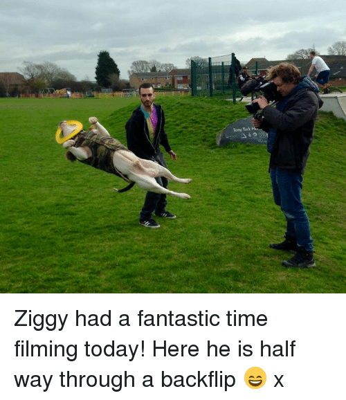 Memes, 🤖, and Times: Tony Tack Ziggy had a fantastic time filming today! Here he is half way through a backflip 😄 x