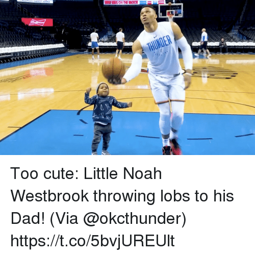 Cute, Dad, and Memes: Too cute: Little Noah Westbrook throwing lobs to his Dad!   (Via @okcthunder)  https://t.co/5bvjUREUlt