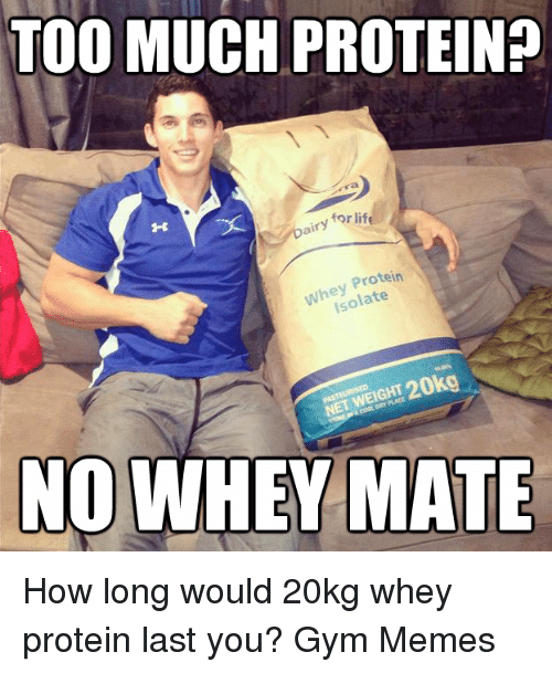 Gym, Life, and Memes: TOO MUCH PROTEINP  for life  Dairy  Protein  he late  ISO  NOWHEY MATE How long would 20kg whey protein last you?  Gym Memes