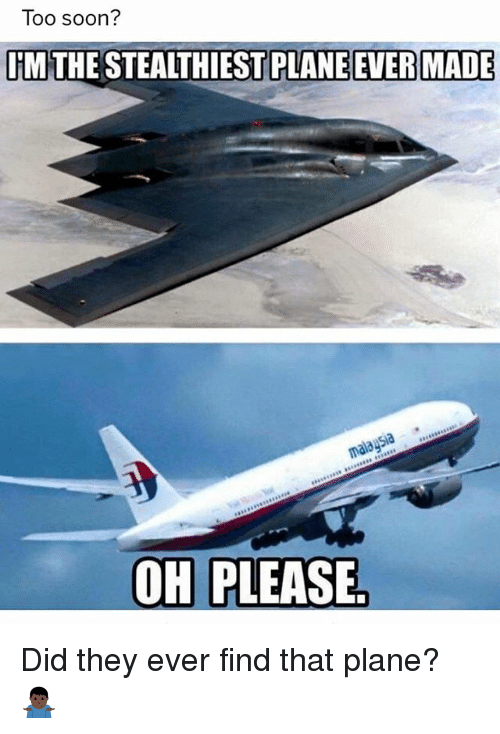 Too Soon Im The Stealthiest Plane Ever Made 91a Oh Please
