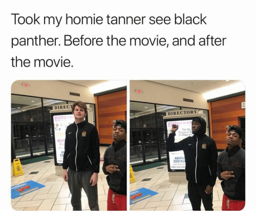 Dogs, Homie, and Black: Took my homie tanner see black  panther. Before the movie, and after  the movie.  DIRECT  DIRECTORY  EIITLL  The No  Cau of D  Dogs &  NEUT  It s  ANIMA  CONTRO  580) 355498