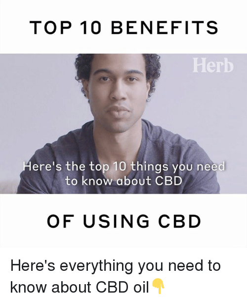 Memes, 🤖, and Cbd: TOP 10 BENEFITS  Herb  ere's the top 10 things you need  to know about CBD  OF USING CBD Here's everything you need to know about CBD oil👇
