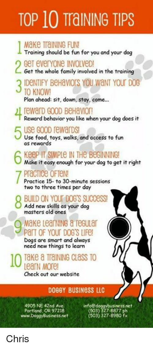Dogs, Family, and Food: TOP 10 TraINING TIPS  Make TraINING FUN  Training should be fun for you and your dog  Get everYoNe INVOLVeD  Get the whole family involved in the training  3 IDENIEY BeHaVWIOrS YOU WNT YOU D  TO KNOW!  Plan ahead: sit, down, stay, come...  rewarD GOOD BeHavion  Reward behavior you like when your dog does it  uSe Go0D rewarDs!  Use food, toys, walks, and access to fun  as rewards  Keep IT SIMPLE IN THe BeGINNING!  Make it easy enough for your dog to get it right  PracTice OFTeN!  Practice 15- to 30-minute sessions  two to three times per day  BUILD ON YOUr DOG'S SUccess  Add new skills as your dog  masters old ones  Make LearNING & TeGuLar  ParT OF YOUR DOG'S LIFe  Dogs are smart and always  need new things to learn  Take a TraINING CLaSS TO  LearN More  Check out our website  DOBGY BUSINESS LLC  4905 NE 42nd Ave.  Portland, OR 97218  www.DoggyBusiness.net  infoed  nessnet  (503) 327-8877 ph  503) 327-8980 fx Chris