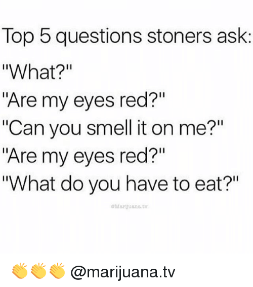 "Memes, Smell, and Marijuana: Top 5 questions stoners ask  ""What?""  ""Are my eyes red?""  ""Can you smell it on me?""  ""Are my eyes red?""  ""What do you have to eat?"" 👏👏👏 @marijuana.tv"