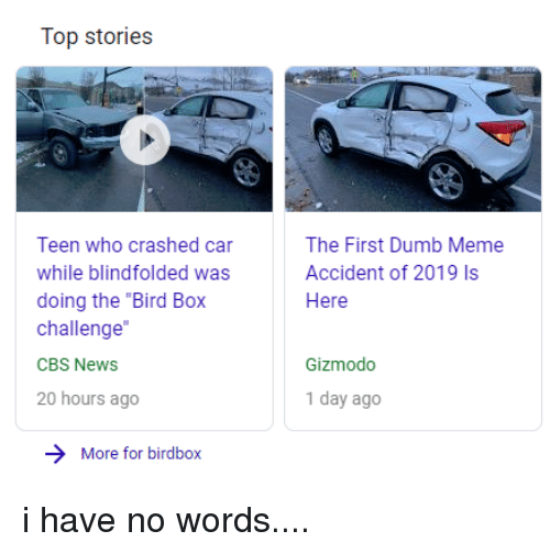 """Dumb, Facepalm, and Meme: Top stories  Teen who crashed car  while blindfolded was  doing the """"Bird Box  challenge  CBS NewS  20 hours ago  The First Dumb Meme  Accident of 2019 Is  Here  Gizmodo  1 day ago  More for birdbox"""