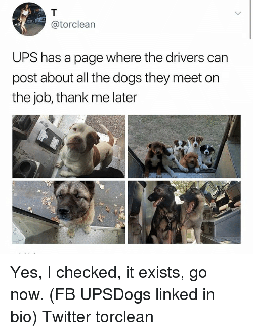 Dogs, Memes, and Twitter: @torclean  UPS has a page where the drivers can  post about all the dogs they meet on  the job, thank me later Yes, I checked, it exists, go now. (FB UPSDogs linked in bio) Twitter torclean