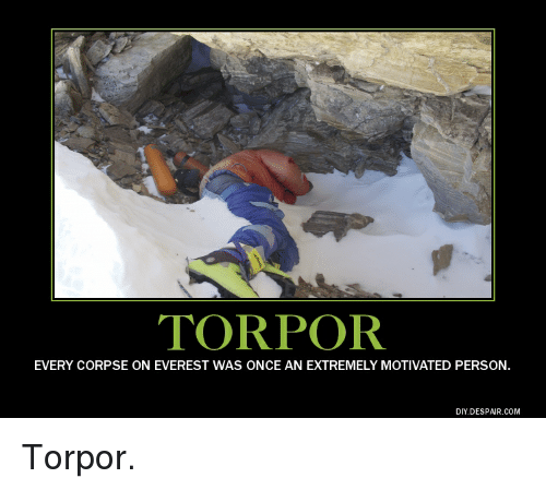 Torpor Every Corpse On Everest Was Once An Extremely
