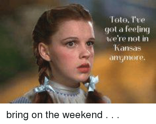 Toto Ive Feeling Were Not In >> Toto I Ve Got A Feeling We Re Not In Anymore Bring On The Weekend