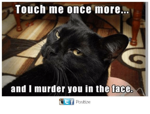 touch me once more and i murder you in the tace postize meme on sizzle. Black Bedroom Furniture Sets. Home Design Ideas