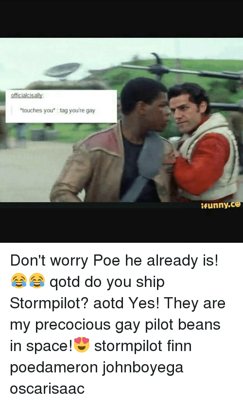 Touches You Tag Youre Gay Tfunnyce Dont Worry Poe He Already Is