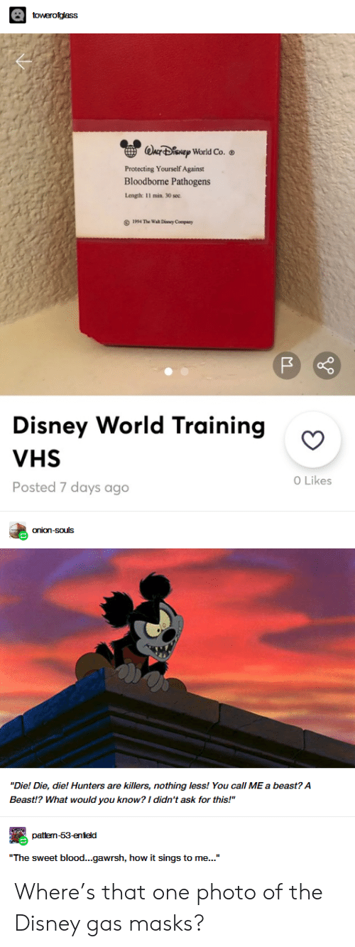 """Disney, Disney World, and Bloodborne: towerofglass  WACF DENEP World Co.  Protecting Yourself Against  Bloodborne Pathogens  Length: 11 min. 30 sec  1994 The Wah Diney Company  Disney World Training  VHS  O Likes  Posted 7 days ago  onion-souls  """"Die! Die, die! Hunters are killers, nothing less! You call ME a beast? A  Beast!? What would you know? I didn't ask for this!""""  pattem-53-enield  """"The sweet blood...gawrsh, how it sings to me..."""" Where's that one photo of the Disney gas masks?"""