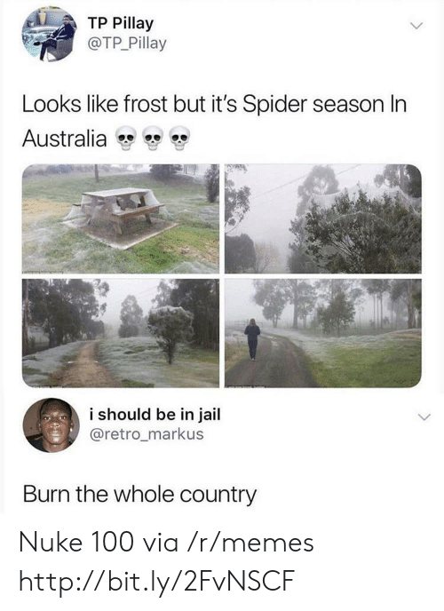Jail, Memes, and Spider: TP Pillay  @TP Pillay  Looks like frost but it's Spider season In  Australia  i should be in jail  @retro_markus  Burn the whole country Nuke 100 via /r/memes http://bit.ly/2FvNSCF