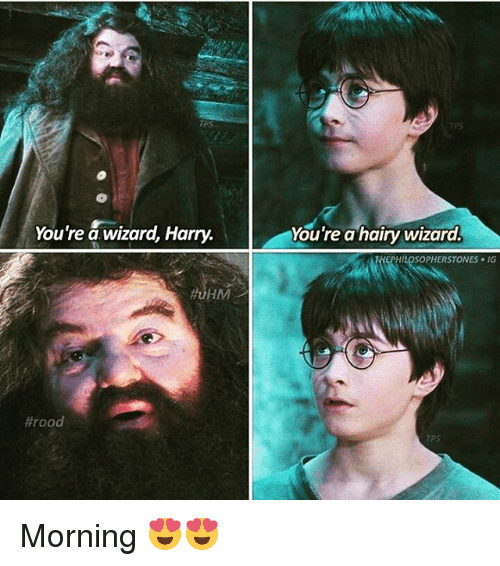 Youre A Hairy Wizard