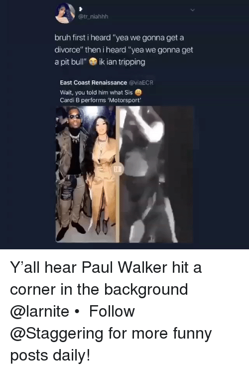 "Bruh, Funny, and Paul Walker: @tr_niahhh  bruh first i heard ""yea we gonna get a  divorce"" then i heard ""yea we gonna get  a pit bull""ik ian tripping  East Coast Renaissance @yiaECR  Wait, you told him what Sis  Cardi B performs 'Motorsport' Y'all hear Paul Walker hit a corner in the background @larnite • ➫➫➫ Follow @Staggering for more funny posts daily!"