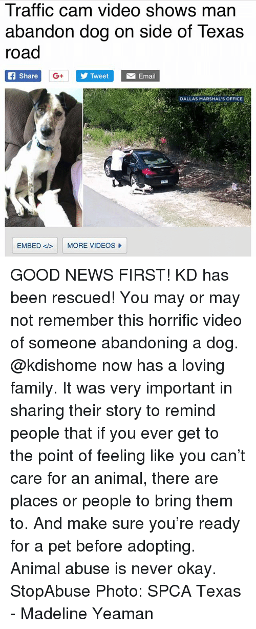 Family, Memes, and News: Traffic cam video shows man  abandon dog on side of Texas  road  Share  G+  Tweet  Email  IEDALLAS MARSHAL'S OFFICE  EMBED <b> |  MORE VIDEOS GOOD NEWS FIRST! KD has been rescued! You may or may not remember this horrific video of someone abandoning a dog. @kdishome now has a loving family. It was very important in sharing their story to remind people that if you ever get to the point of feeling like you can't care for an animal, there are places or people to bring them to. And make sure you're ready for a pet before adopting. Animal abuse is never okay. StopAbuse Photo: SPCA Texas - Madeline Yeaman