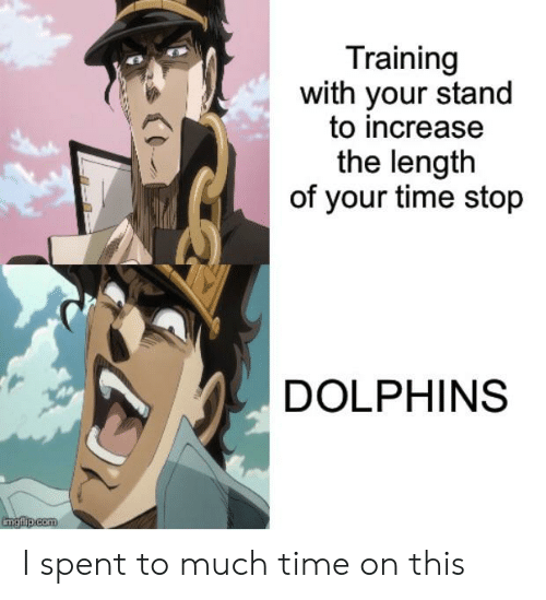 Dolphins, Time, and Com: Training  with your stand  to increase  the length  of your time stop  DOLPHINS  imgfilip.com I spent to much time on this