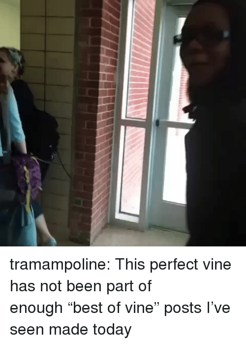 """Target, Tumblr, and Vine: tramampoline: This perfect vine has not been part of enough""""best of vine"""" posts I've seen made today"""