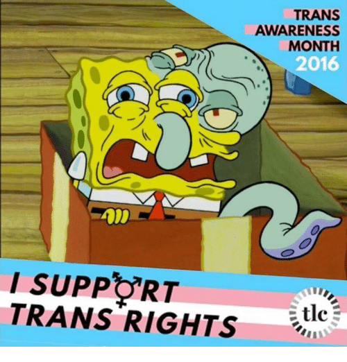 Dank Memes, Tlc, and Tran: TRANS  AWARENESS  MONTH  2016  SUPPORT  TRANS RIGHTS  tlc