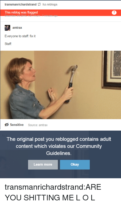 Community, Target, and Tumblr: transmanrichardstrand hz-reblogs  This reblog was flagged  amtrax  Staff.  Sensitive Source: amtrax   The original post you reblogged contains adult  content which violates our Community  Guidelines.  Learn more  Okay transmanrichardstrand:ARE YOU SHITTING ME L O L