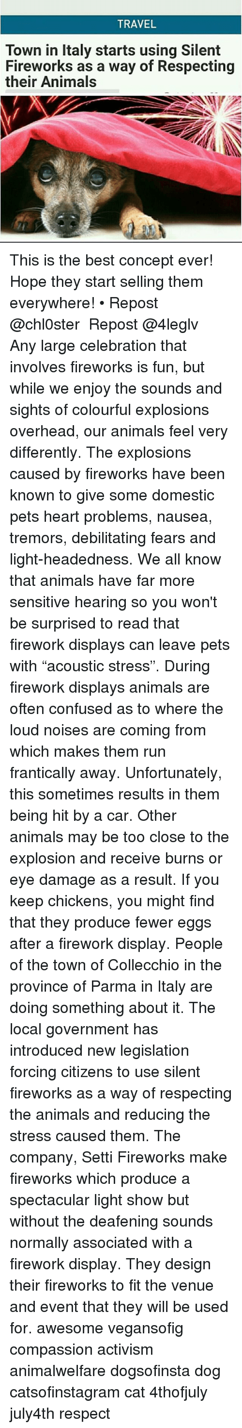 """Animals, Cars, and Cats: TRAVEL  Town in Italy starts using Silent  Fireworks as a way of Respecting  their Animal This is the best concept ever! Hope they start selling them everywhere! • Repost @chl0ster ・・・ Repost @4leglv ・・・ Any large celebration that involves fireworks is fun, but while we enjoy the sounds and sights of colourful explosions overhead, our animals feel very differently. The explosions caused by fireworks have been known to give some domestic pets heart problems, nausea, tremors, debilitating fears and light-headedness. We all know that animals have far more sensitive hearing so you won't be surprised to read that firework displays can leave pets with """"acoustic stress"""". During firework displays animals are often confused as to where the loud noises are coming from which makes them run frantically away. Unfortunately, this sometimes results in them being hit by a car. Other animals may be too close to the explosion and receive burns or eye damage as a result. If you keep chickens, you might find that they produce fewer eggs after a firework display. People of the town of Collecchio in the province of Parma in Italy are doing something about it. The local government has introduced new legislation forcing citizens to use silent fireworks as a way of respecting the animals and reducing the stress caused them. The company, Setti Fireworks make fireworks which produce a spectacular light show but without the deafening sounds normally associated with a firework display. They design their fireworks to fit the venue and event that they will be used for. awesome vegansofig compassion activism animalwelfare dogsofinsta dog catsofinstagram cat 4thofjuly july4th respect"""