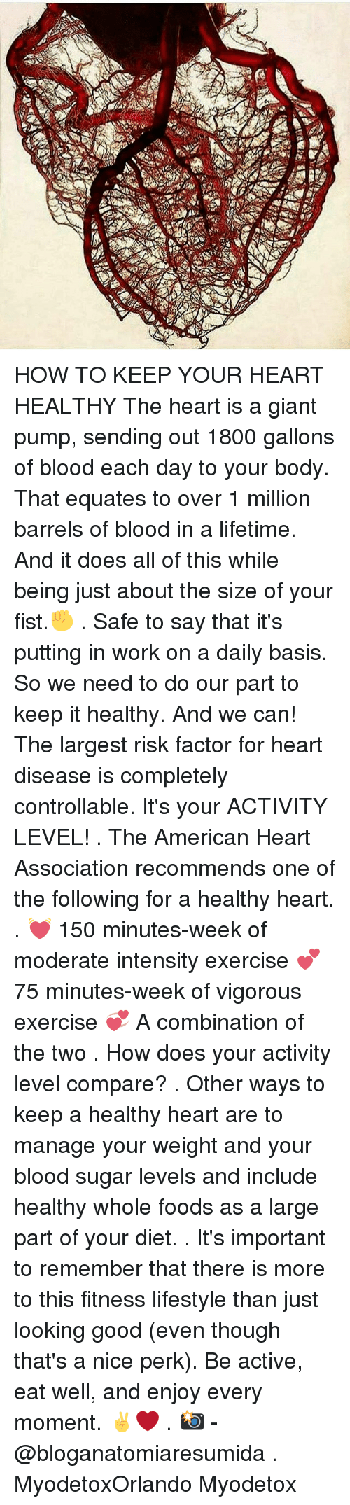 Memes, Whole Foods, and Work: traw: HOW TO KEEP YOUR HEART HEALTHY The heart is a giant pump, sending out 1800 gallons of blood each day to your body. That equates to over 1 million barrels of blood in a lifetime. And it does all of this while being just about the size of your fist.✊ . Safe to say that it's putting in work on a daily basis. So we need to do our part to keep it healthy. And we can! The largest risk factor for heart disease is completely controllable. It's your ACTIVITY LEVEL! . The American Heart Association recommends one of the following for a healthy heart. . 💓 150 minutes-week of moderate intensity exercise 💕 75 minutes-week of vigorous exercise 💞 A combination of the two . How does your activity level compare? . Other ways to keep a healthy heart are to manage your weight and your blood sugar levels and include healthy whole foods as a large part of your diet. . It's important to remember that there is more to this fitness lifestyle than just looking good (even though that's a nice perk). Be active, eat well, and enjoy every moment. ✌❤ . 📸 - @bloganatomiaresumida . MyodetoxOrlando Myodetox