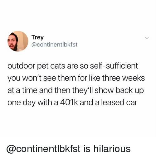 Cats, 401k, and Time: Trey  @continentlbkfst  outdoor pet cats are so self-sufficient  you won't see them for like three weeks  at a time and then they'll show back up  one day with a 401k and a leased car @continentlbkfst is hilarious