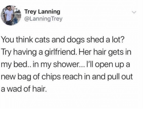 Cats, Dogs, and Shower: Trey Lanning  @Lanning Trey  You think cats and dogs shed a lot?  Try having a girlfriend. Her hair gets in  my bed.. in my shower... I'll open up a  new bag of chips reach in and pull out  a wad of hair.