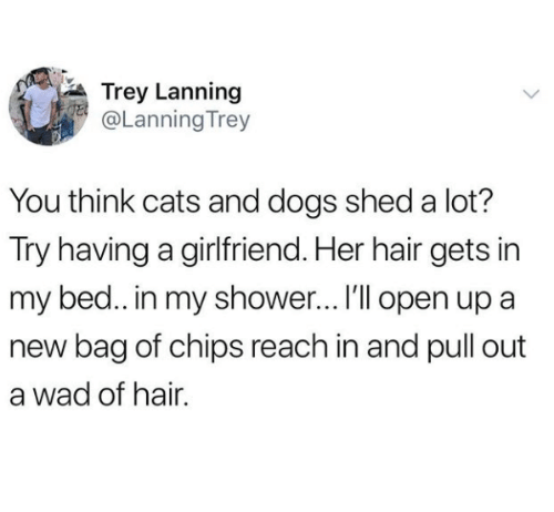 Cats, Dogs, and Shower: Trey Lanning  @LanningTrey  You think cats and dogs shed a lot?  Try having a girlfriend. Her hair gets in  my bed.. in my shower...I'l open up a  new bag of chips reach in and pull out  a wad of hair.