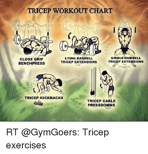 Memes Exercise And Charts TRICEP WORKOUT CHART LYING BARBELL SINGLE DUMBELL CLOSE GRIP